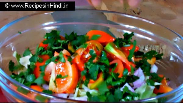 How to Make Onion and Cabbage Salad Recipe in Hindi, Best Indian Salad Recipes, Quick Cabbage Salad Recipe, Indian Vegetarian Salad Recipe.